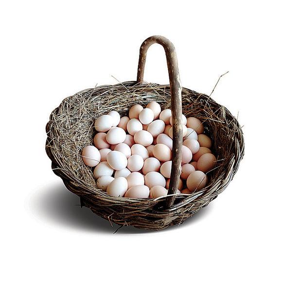 【神头村鹊山土鸡蛋】21元/斤 邢台内丘鹊山基地