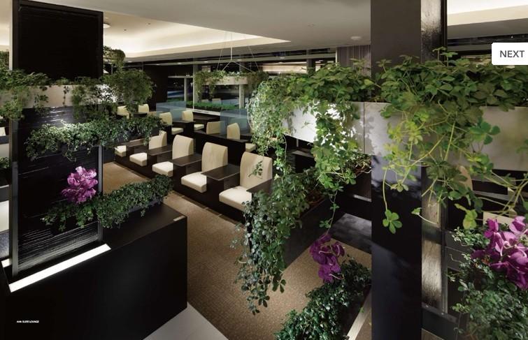 日本近几年来知名设计师大作的室内设计精装画册包括餐厅,商店,咖啡厅
