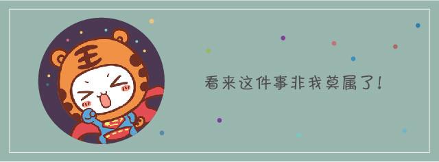 集客plus沪江限量珍藏版 cc猫萌萌哒集客笔记本套装