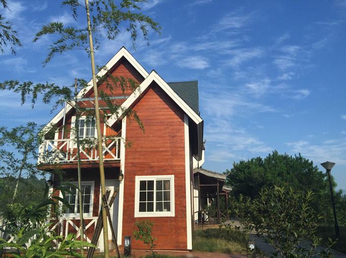中央悬空打造的欧式乡村木屋