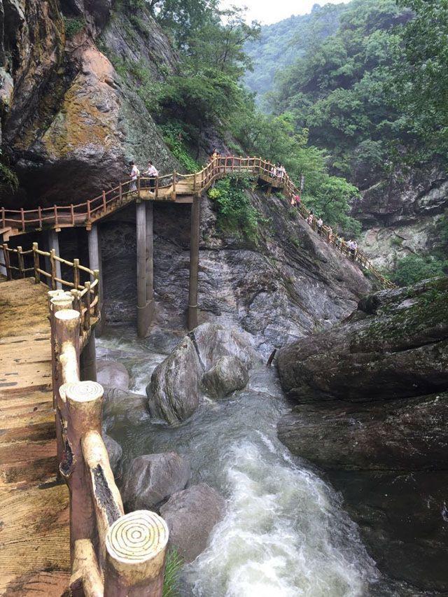 吴家山森林公园旅游