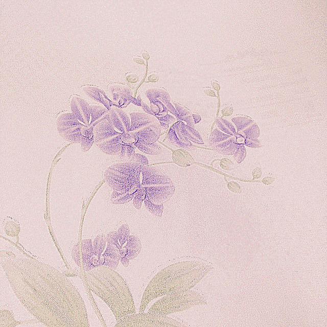 植彩壁纸--特价无纺布壁纸