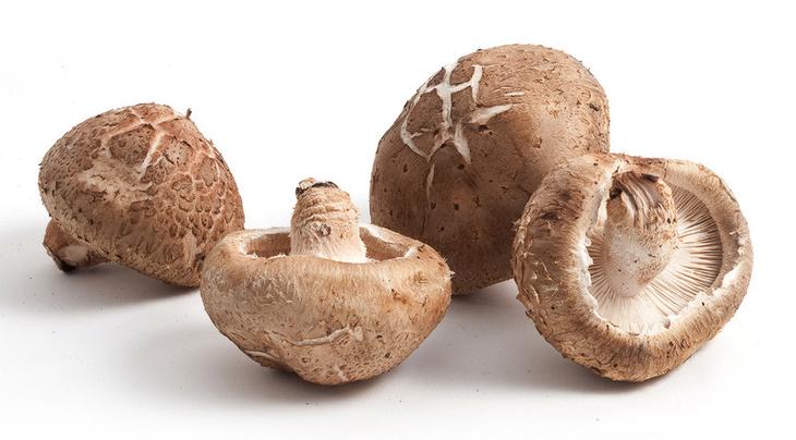 木头香菇图片大全