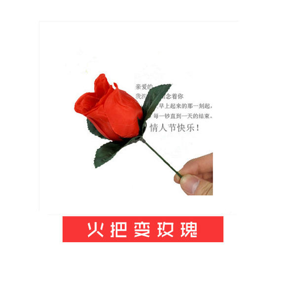 火把变玫瑰