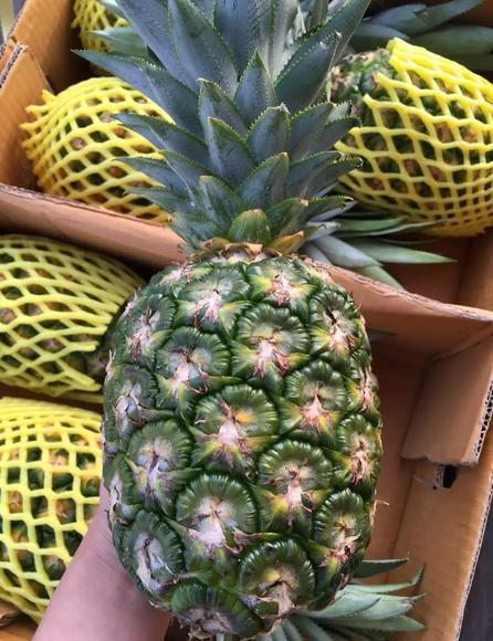 泰国菠萝头教程图解