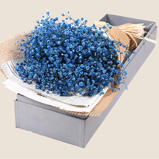 天然干花花束礼盒满天星干鲜花速递