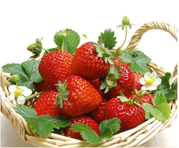 盒装草莓 15/盒