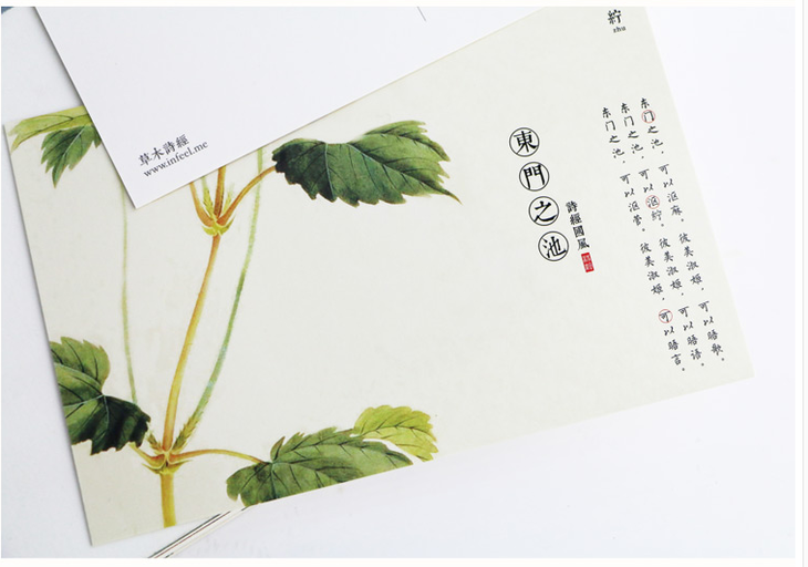 草木诗经 复古明信片30张盒装手绘古风植物