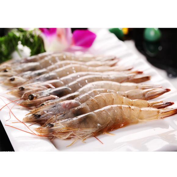 野生斑竹虾
