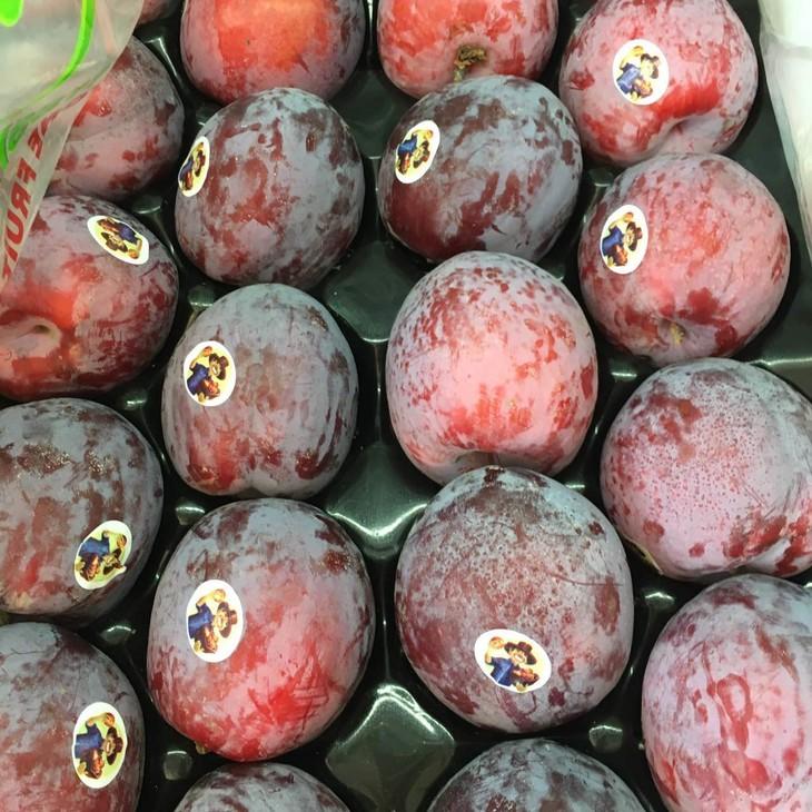 """杏李又名恐龙蛋,为顶级加州蜜李的一种,这种水果的英文名叫做""""pluot"""""""