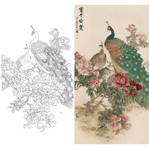白描底稿-田世光工笔竖幅花鸟-牡丹孔雀-富贵绮霞-a081
