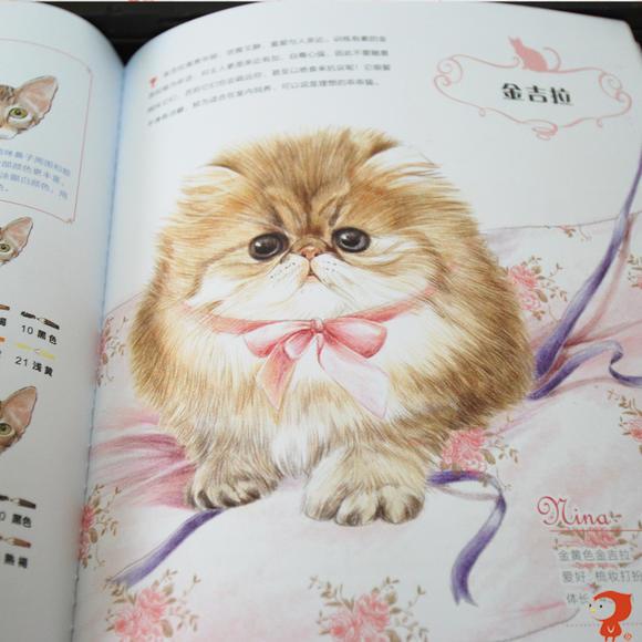 飞乐鸟《猫咪绘》色铅笔手绘猫咪 绘画教程 马可雷洛阿油性48色绘