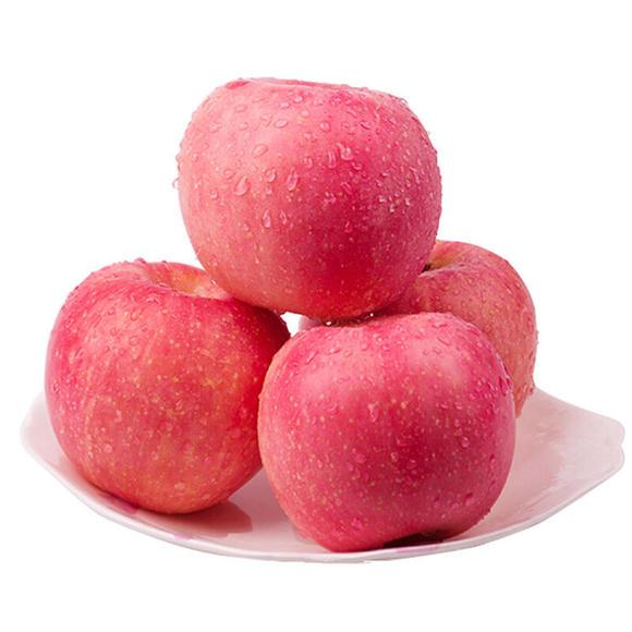红富士苹果85号图片