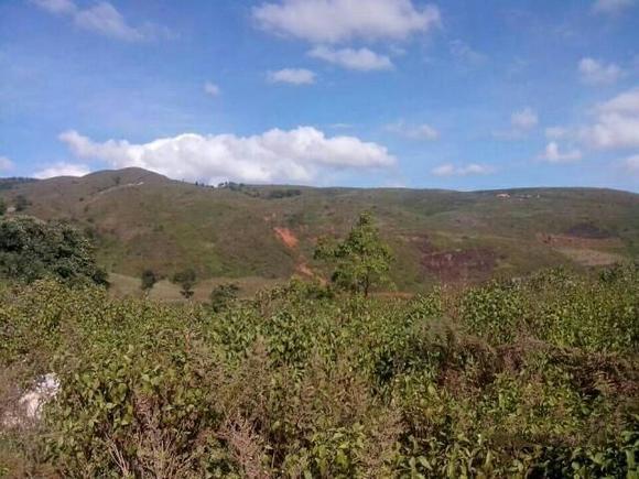 (0015)云南临沧云县4000亩山地 林地转让转让费:600万