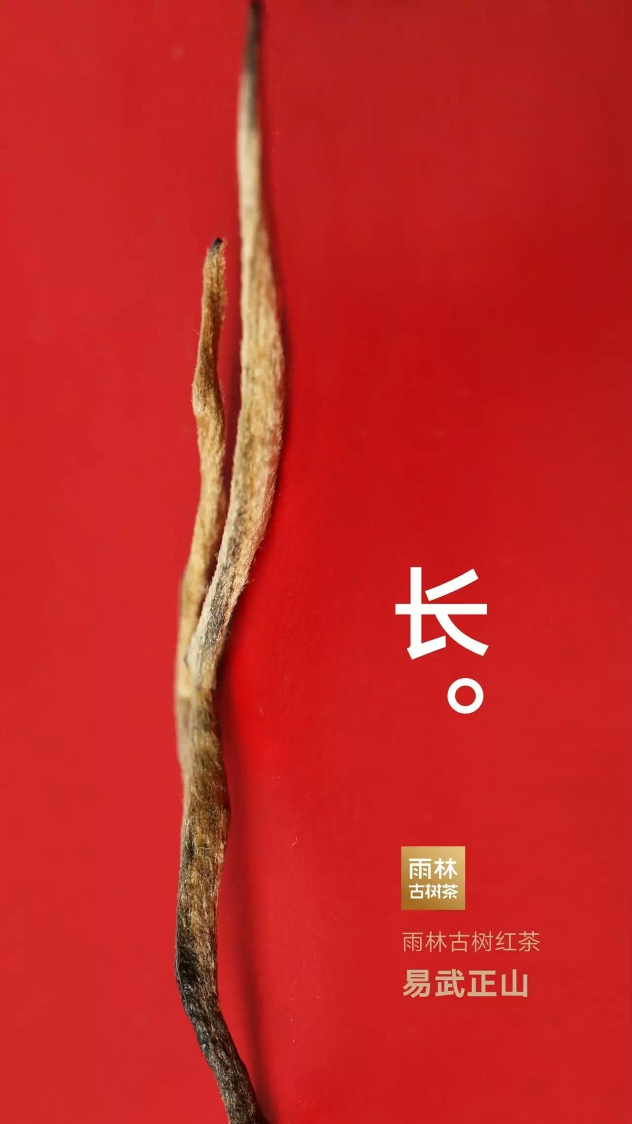 雨林红9号 古树红茶 单盒装 特价 全国包邮