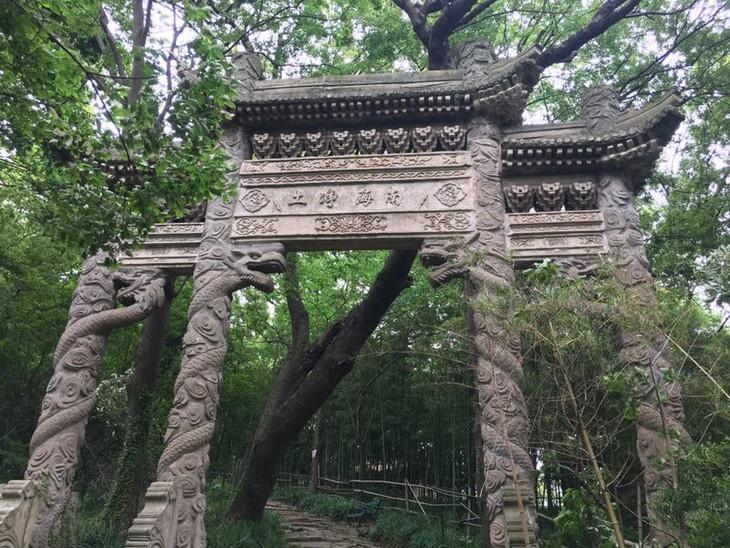 2.3相约美丽又文艺的外蒲岛,探索上海最后的渔村(1天活动)