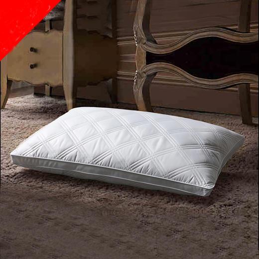 可水洗双边绗缝枕一对装 商品图0