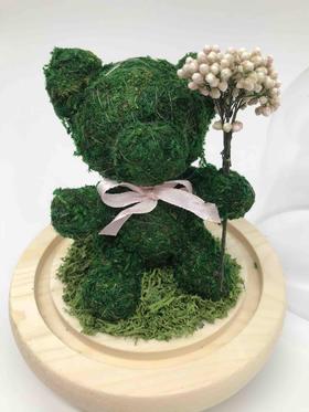 爱无国界之—圣诞永生花礼盒绿色小熊