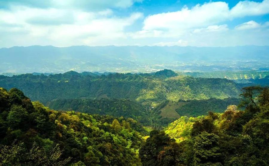 自驾:雅安市名山区蒙顶山风景名胜区 一键导航 优惠政策 a.