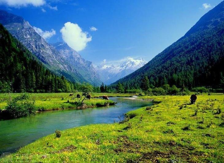 美丽的风景总是藏在人迹罕至处