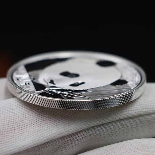 【熊猫币】2018年熊猫30克银币·中国人民银行发行 商品图3