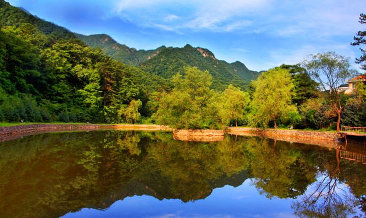 朱雀国家森林公园门票【成人票】图片
