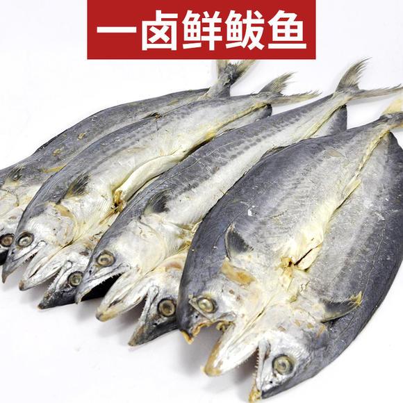 优选d|舌尖上的中国推荐 青岛特产一卤鲜鲅鱼 每条约1