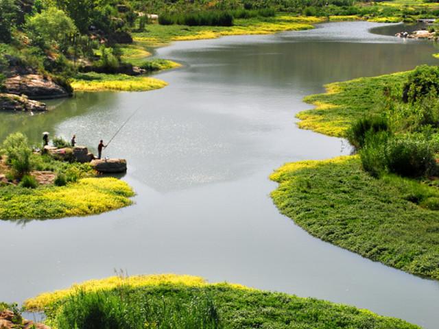 8平方公里的淇淅河水系,缠绕整个淇淅河湿地公园,沿岸形成了众多的图片