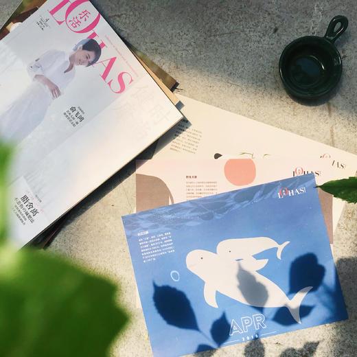【LOHAS杂志】诚品生活方式类刊物排名NO.1|全新改版双月刊|一年六期包邮到家|订阅即赠100元商城代金券|全年订阅210元 商品图3