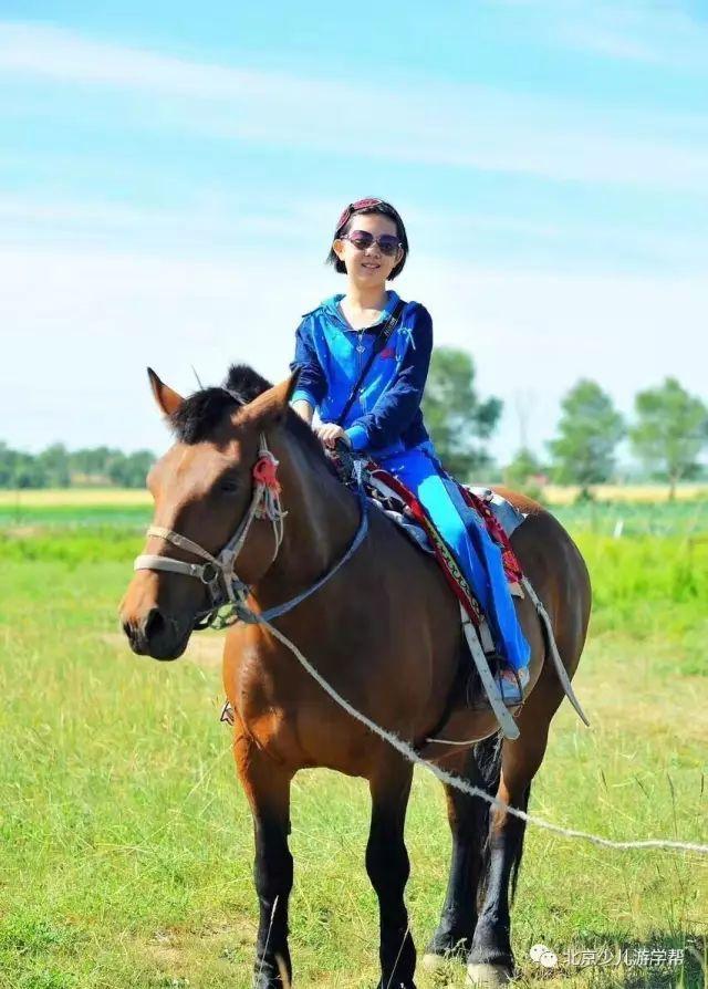 就是鄂尔多斯大草原 变身草原小牧民 放羊,牵马,做美食 射箭,骑马,学