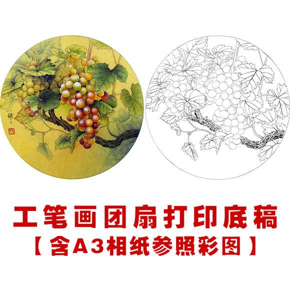 ts55高清工笔画葡萄素材花鸟国画小品圆形团扇临摹线描稿白描底稿
