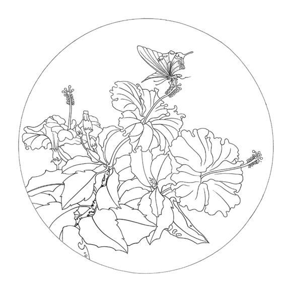 ts60工笔画白描底稿国画花鸟小品团扇线描稿临摹透稿