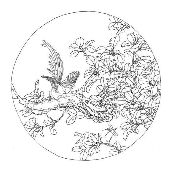 ts53工笔画白描底稿临摹练习初学者入门国画花鸟团扇