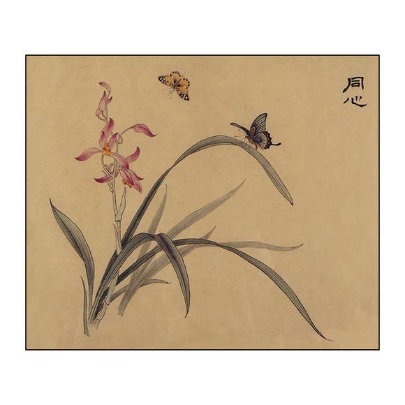 df150工笔画白描底稿国画花鸟牡丹入门底稿初学者临摹
