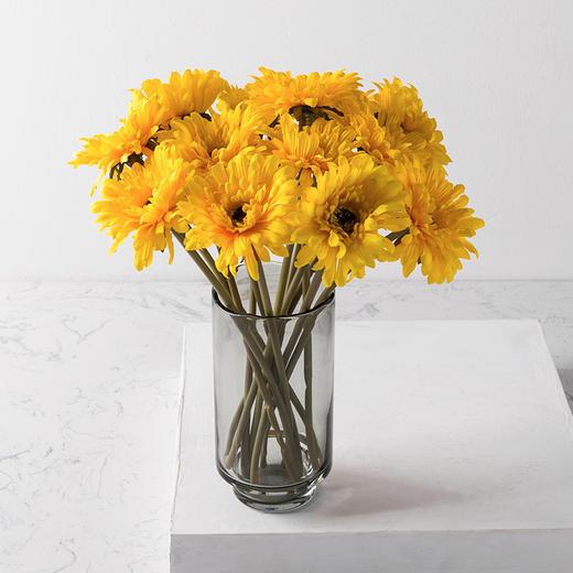 高仿真花艺室内客厅摆设装饰绢花假花干花 短杆非洲菊H 商品图4
