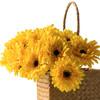 高仿真花艺室内客厅摆设装饰绢花假花干花 短杆非洲菊H 商品缩略图5
