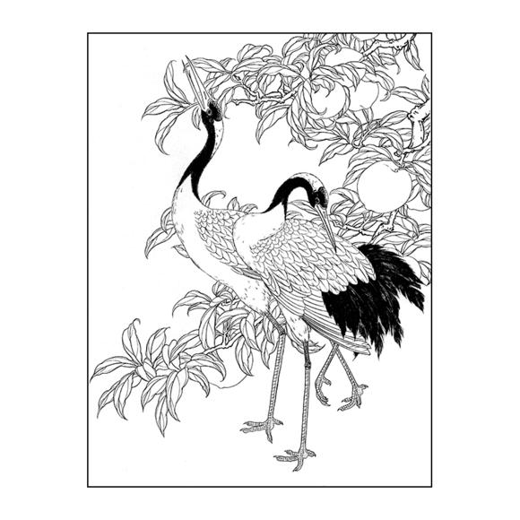 df115高清工笔画仙鹤寿桃素材国画花鸟线描工笔画白描
