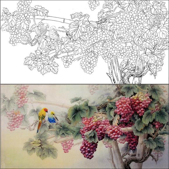 hf48高清工笔画 国画 花鸟临摹勾线底稿图片