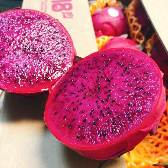 【主推】北纬18度海南蜜宝 火龙果,有机栽培,纯甜蜜甜