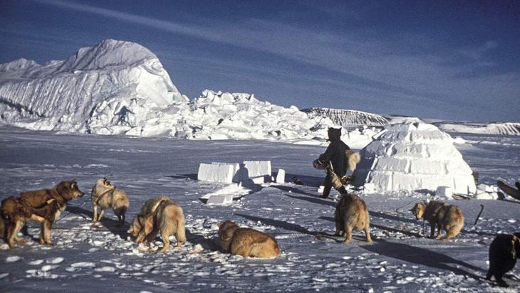 爱斯基摩人的标志:冰屋,雪橇犬
