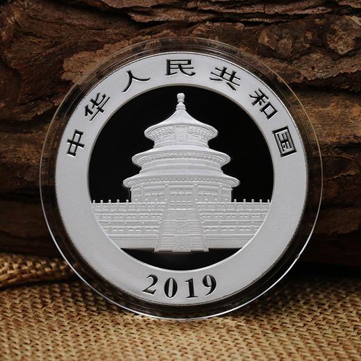 2019年熊猫30克银币 ·中国人民银行发行 商品图2