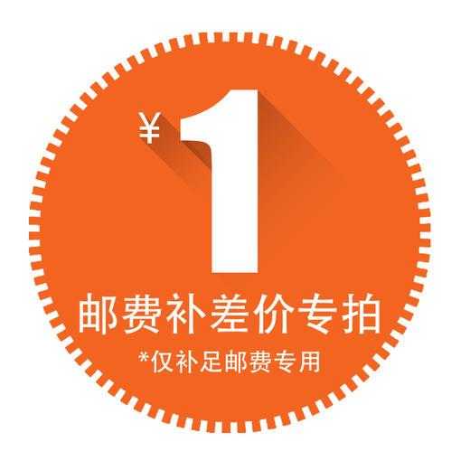 【邮费补差价】【翻译器附加运费】联系在线客服下单,差几元请拍对应数量~ 商品图0
