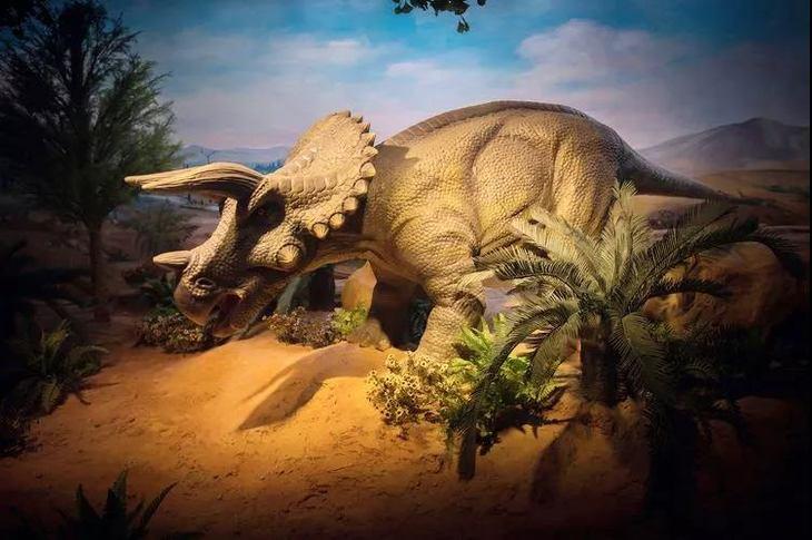 《探寻神奇的古爬行动物》北京自然博物馆