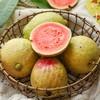 送5包酸梅粉 | 红心番石榴 芭乐 清脆鲜甜 软糯香甜 低糖健康水果 商品缩略图4