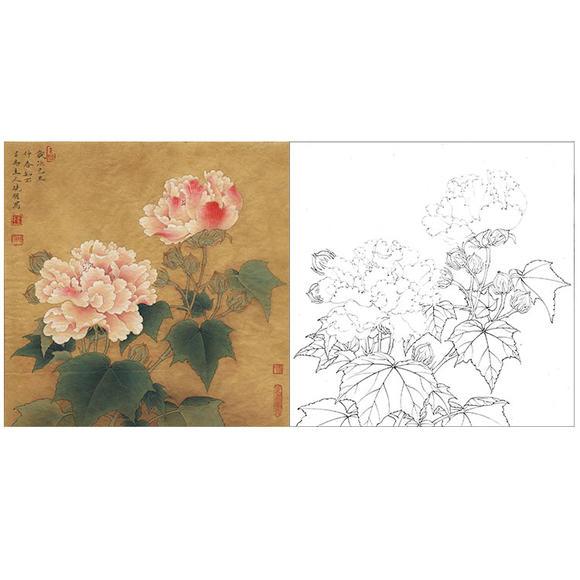 李晓明工笔花鸟白描底稿-红芙蓉-k111