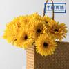高仿真花艺室内客厅摆设装饰绢花假花干花 短杆非洲菊H 商品缩略图0