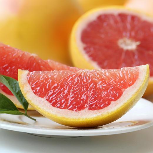 精选南非红心西柚 单果210-300g左右 进口葡萄柚红肉柚子 当季时令水果新鲜 蜜柚 商品图3