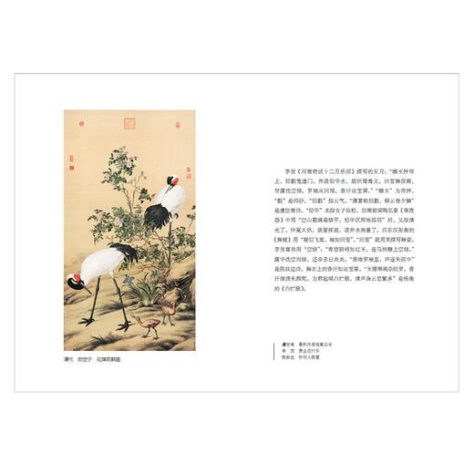 【樊登直播】日读古诗词 朱伟 著  中信出版社图书 正版书籍 商品图4