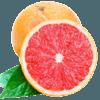 精选南非红心西柚 单果210-300g左右 进口葡萄柚红肉柚子 当季时令水果新鲜 蜜柚 商品缩略图0