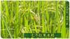 富硒七不红米 红皮大米 2020年11月东北海伦伦河镇黑土寒地七不种植基地自产 明安心法农业 自有品种 商品缩略图3